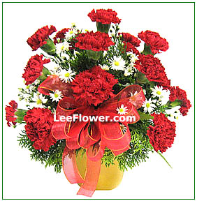 ( FA0037 )  Always on my mind   |  Carnation Flowers Arrangement.