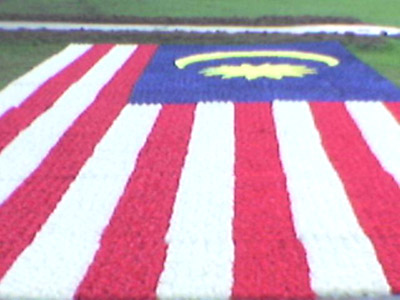 Malaysia Flag with Flowers
