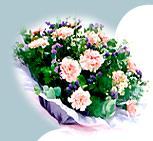 The preferred online florist in Malaysia